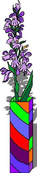 orquidea-imagem-animada-0006