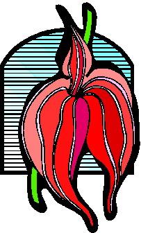 orquidea-imagem-animada-0007