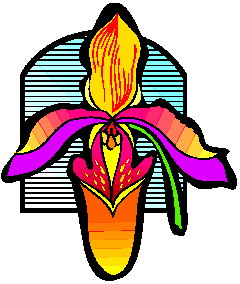 orquidea-imagem-animada-0009