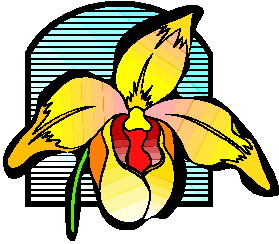 orquidea-imagem-animada-0010