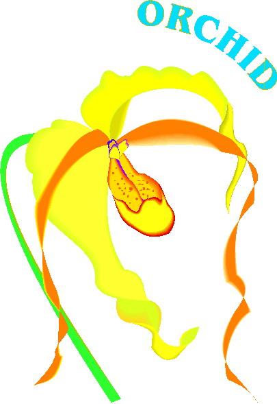 orquidea-imagem-animada-0011