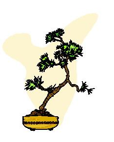 bonsai-imagem-animada-0046