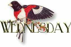 dia-da-semana-imagem-animada-0005
