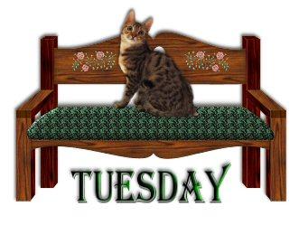 dia-da-semana-imagem-animada-0019