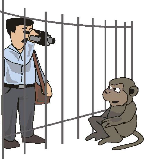 zoologico-imagem-animada-0011