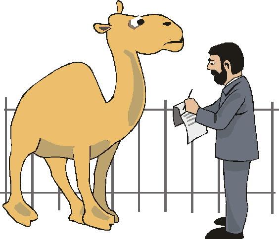 zoologico-imagem-animada-0012