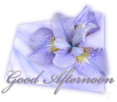 boa-tarde-imagem-animada-0014
