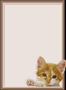 placa-de-nome-imagem-animada-0005