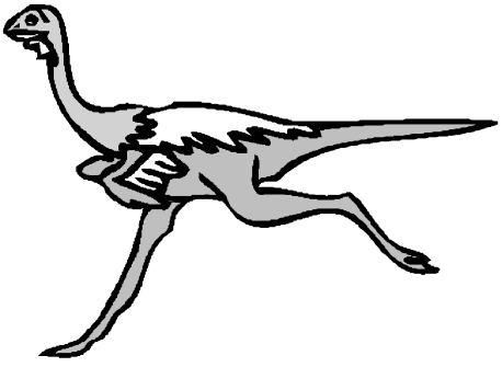 avestruz-imagem-animada-0027