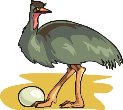 avestruz-imagem-animada-0085