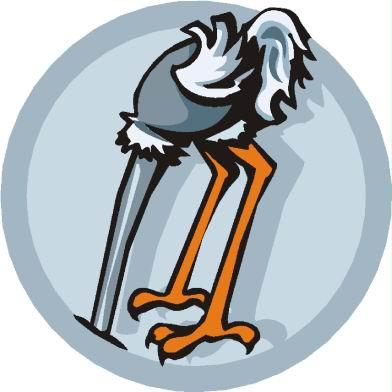 avestruz-imagem-animada-0087