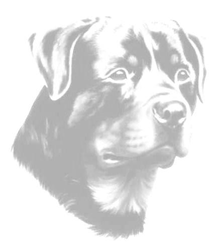 rotweiller-imagem-animada-0019
