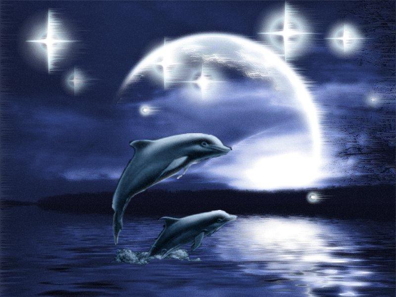 mar-e-oceano-imagem-animada-0003