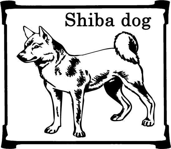 shiba-inu-imagem-animada-0006