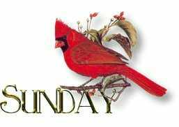 domingo-imagem-animada-0021