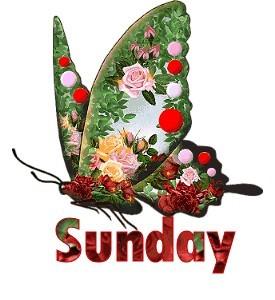 domingo-imagem-animada-0046
