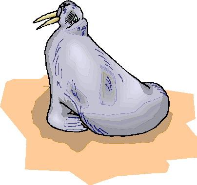 morsa-imagem-animada-0008