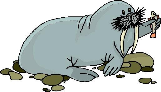 morsa-imagem-animada-0026