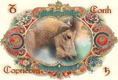 sinal-do-zodiaco-imagem-animada-0003