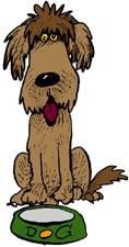 racao-e-comida-de-cachorro-imagem-animada-0001