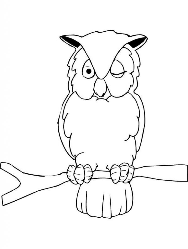 desenho-colorir-coruja-imagem-animada-0006