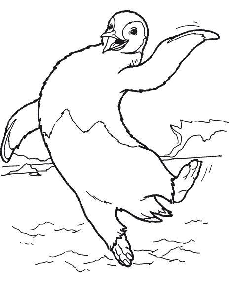 desenho-colorir-pinguim-imagem-animada-0020