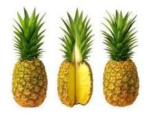 abacaxi-e-ananas-imagem-animada-0014