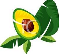 abacate-imagem-animada-0019