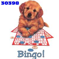 bingo-imagem-animada-0025